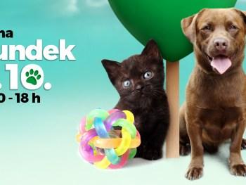 Bundek, 6.10. - obilježavanje Međunarodnog dana zaštite životinja