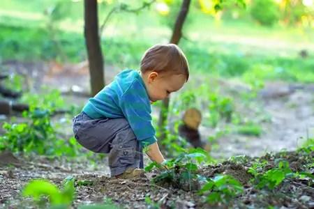 Risultato immagine per bosco bambini