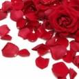 Szerelmetes népszokások, az Isten és Istennő násza, termékenység ünnep és érdekességek, kedves hagyományok…ezekről és az időszak rózsa illatú ÉletSzerelméről szól írásom 🙂 A munka ünnepén túl, május 1-je a szerelem […]
