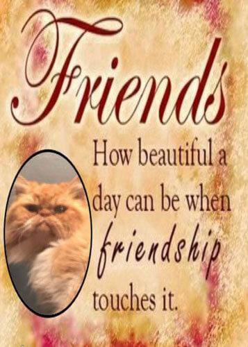 Saying About Friendship