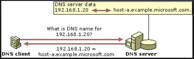 Reverse DNS look up