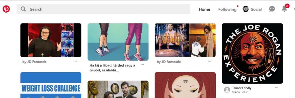 Pinterest nuovo social network che permette di condividere le immagini nel web.