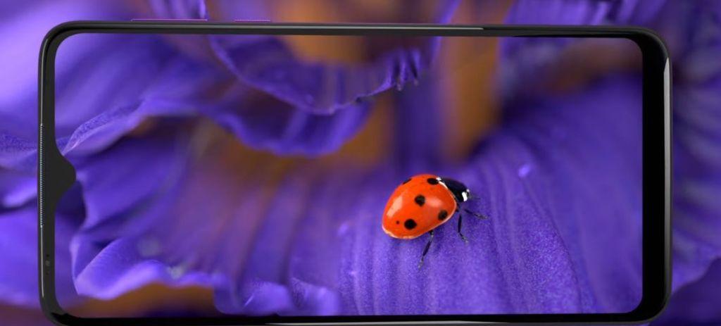 Capacità fotocamera cellulare Motorola One Macro che inquadra una coccinella