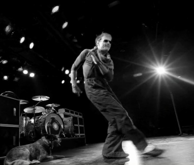 Van Halen Fans Including Flea Welcome 2012 Tour News Noise11 Com