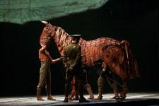 War Horse photo by Ros OGorman