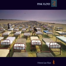 a-momentary-lapse-of-reason
