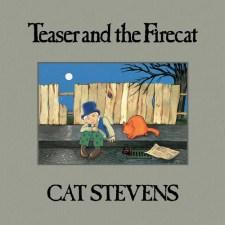 Cat Stevens Teaser and the Firecat