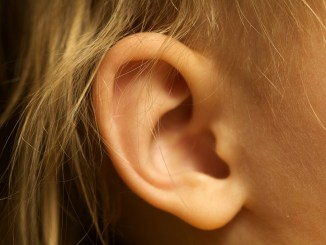 Kid's ear