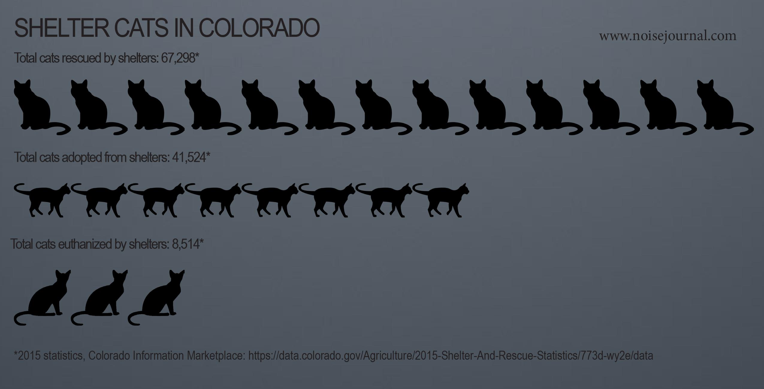 2015 colorado rescue cat statistics graphic