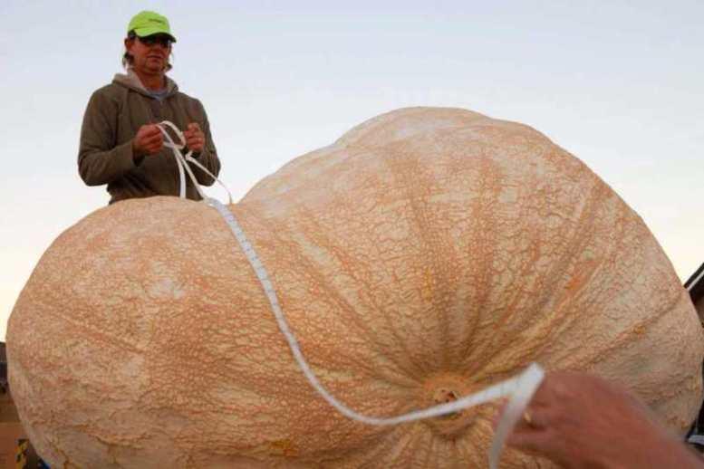 l'anguria più grande del mondo!