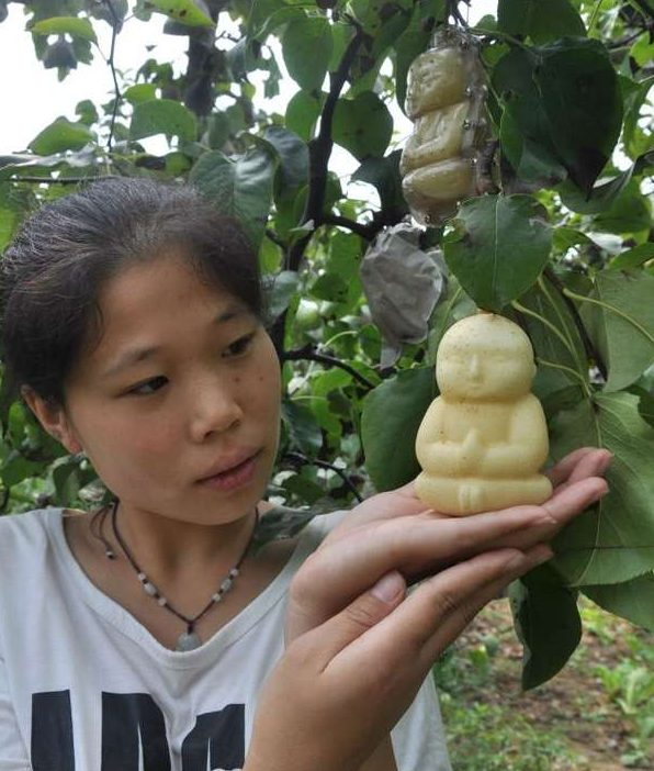 pere a forma di buddha