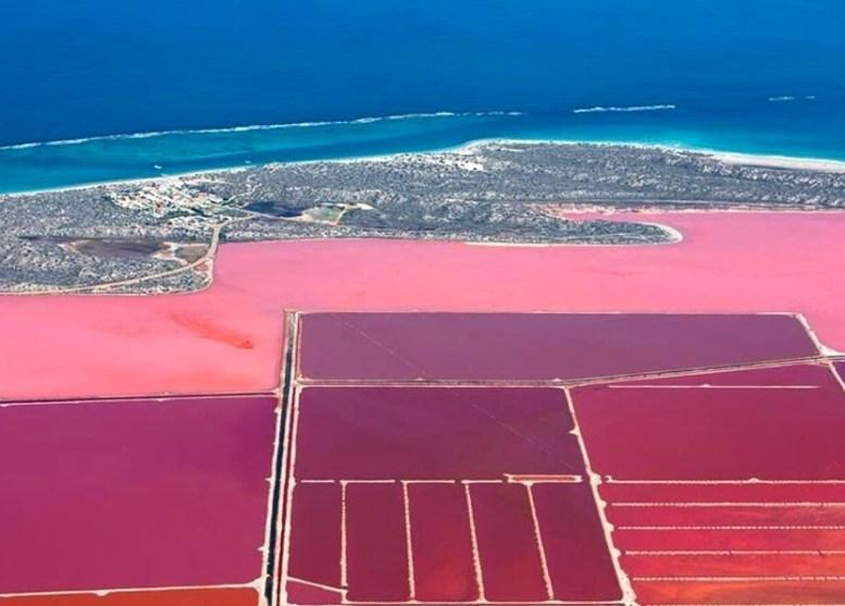 steve back hutt lagoon lago rosa australia