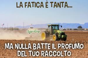 frasi noi siamo agricoltura
