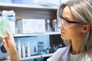 Dal tabacco si può riscrivere il DNA per poter creare farmaci
