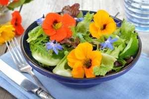 insalata-di-fiori-commestibili-eduli-edibili