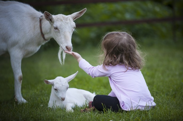 Agriturismo per bambini