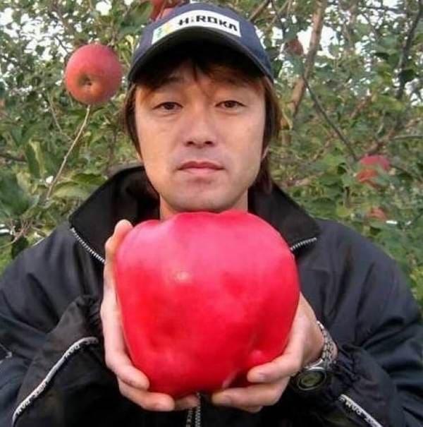 mela gigante
