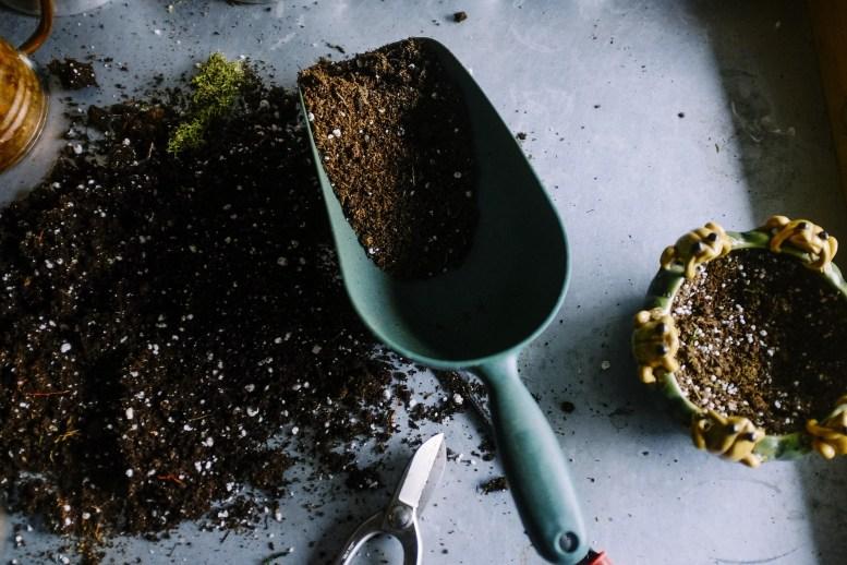 Misurare il ph del terreno