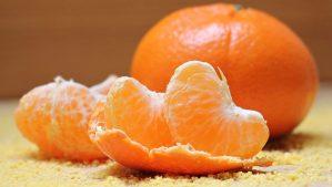 Coltivazione del mandarino