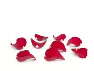 Sommai_vörös rózsaszirom
