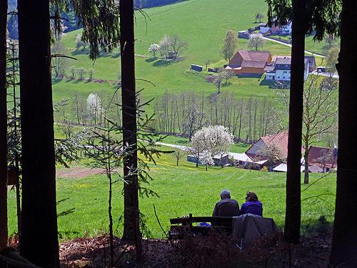 500 Blick auf Airlenbach
