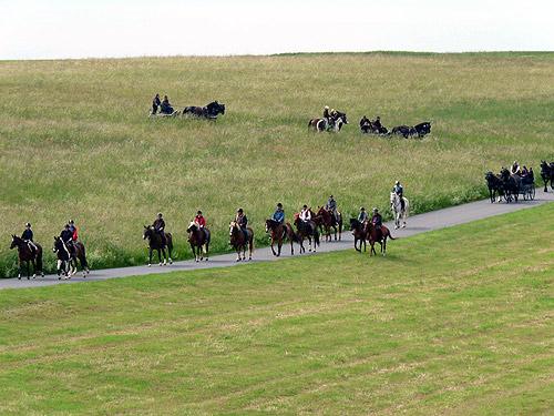 500 Natur und Reiter im Einklang