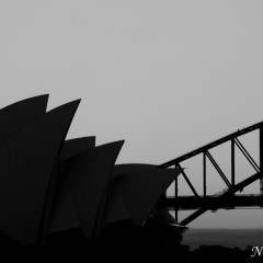Sydney Opera House silhouette (454F10840)