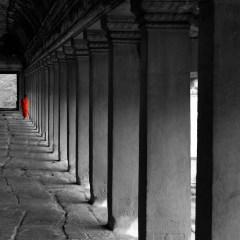 Monk at Angkor Wat (454F17257)