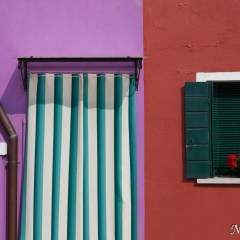 Purple and red Burano houses (454F27475)