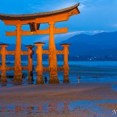 Sunset at Itsukushima Shrine (454F42463)