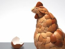 chicken_egg_shell2