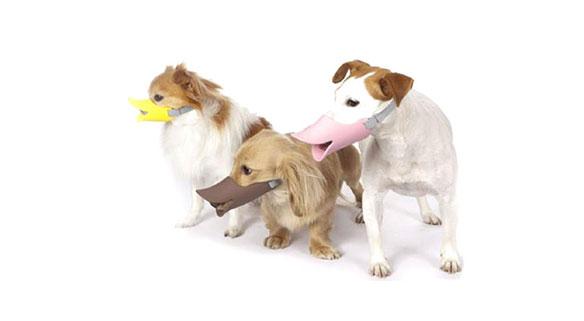 bozal-para-perros