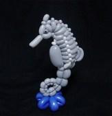 seahorse-