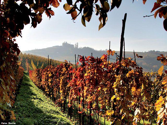 Cultura, storia e natura sono tra le principali ricchezze del territorio della provincia di Cuneo