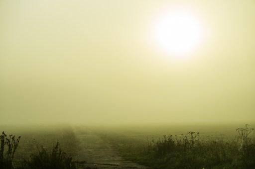 wpid-Misty-day-on-Epinoy.jpg