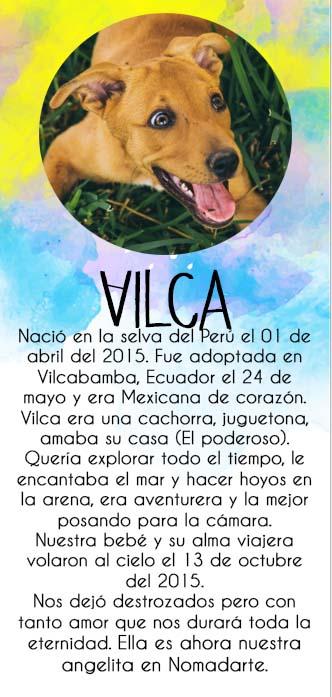 Biografía Vilca