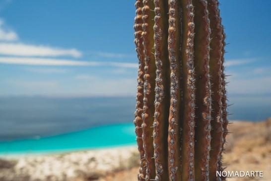 balandra-16 baja california sur playas de mexico