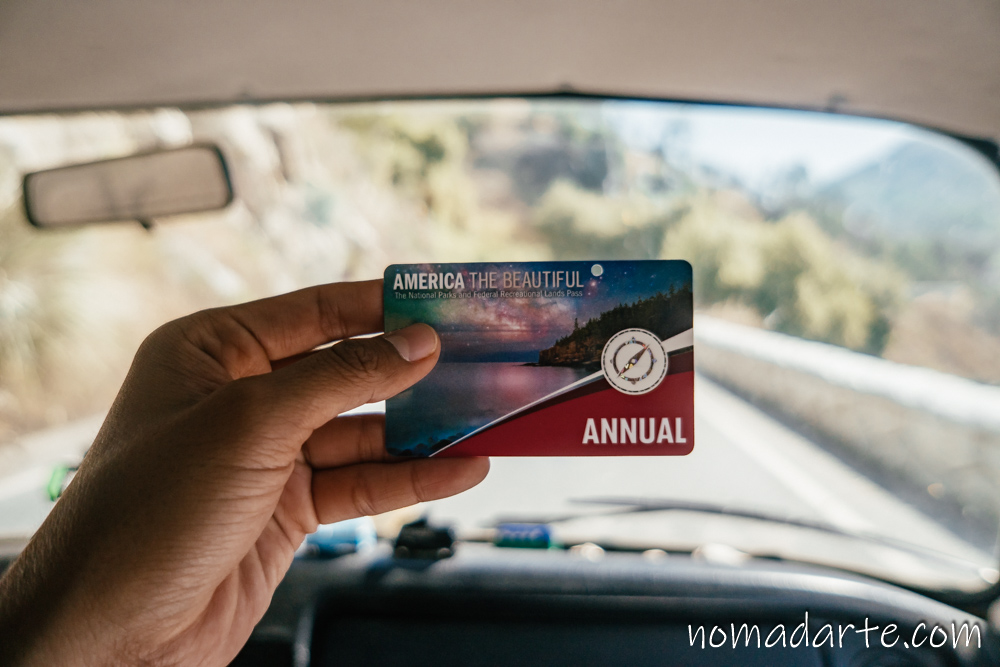 annuall pass