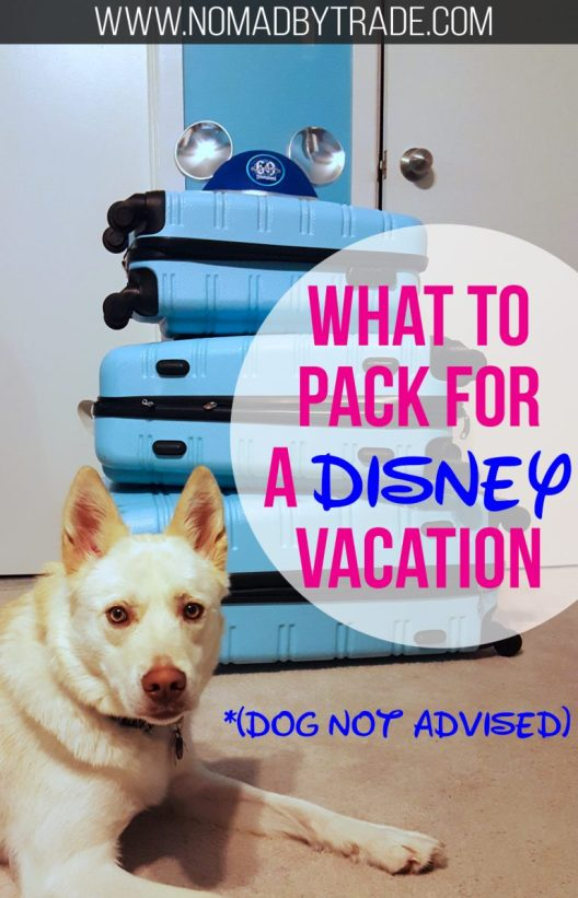You just booked your dream Disney World trip. What's next? You'll have to figure out what to pack. This Disney packing list features Disney World essentials from a former Cast Member. #Disney | #DisneyWorld | #MagicKingdom | #Epcot | #AnimalKingdom | #HollywoodStudios | What to pack for Disney World | Disney World packing list | #USA | #Florida | Disney packing tips