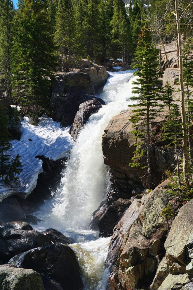Alberta Falls in Rocky Mountain National Park
