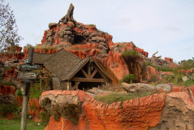 Splash Mountain at the Magic Kingdom is one ride you should get a FastPass for