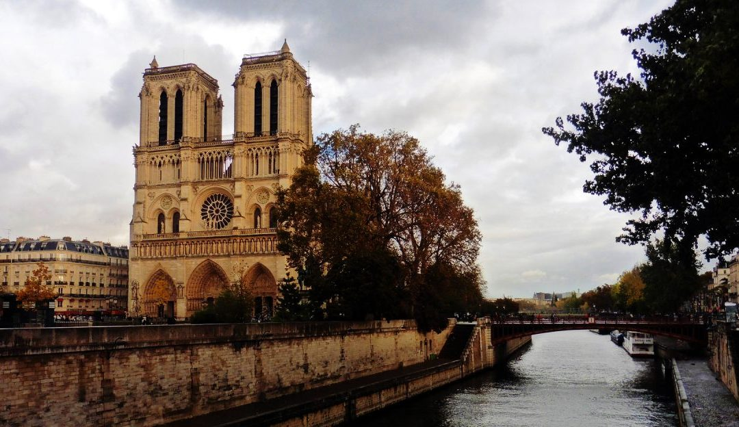 Notre Dame: Birds, Gargoyles, and an Incredible View