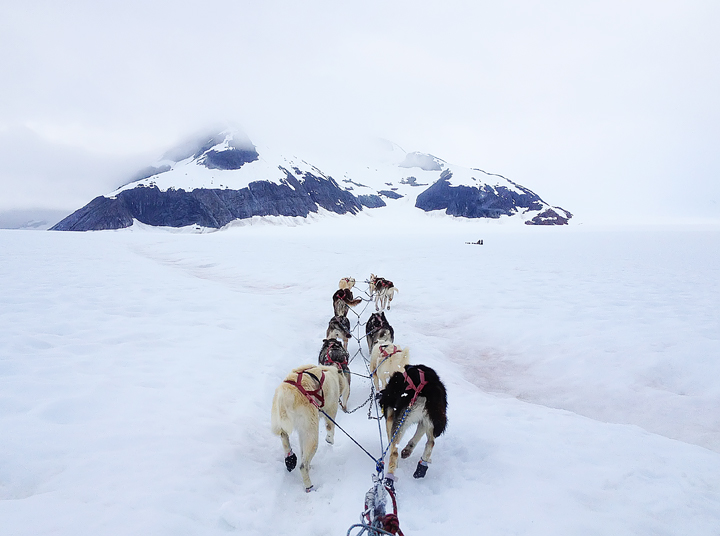 View from a dogsled as a team of dogs pulls it across a snowy landscape with mountains in the background