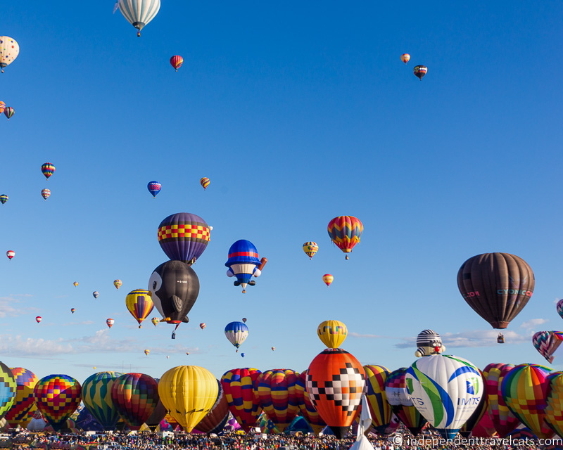 Hot air balloons at the Albequerque Balloon Fiesta