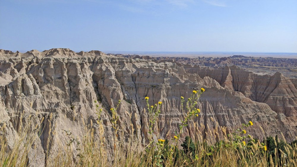Flowers in front of rock formations at Badlands National Park