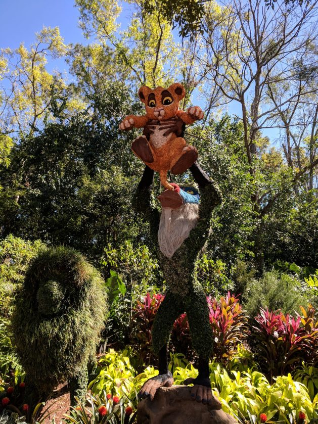 Lion King topiary at the Epcot International Flower and Garden Festival 2018