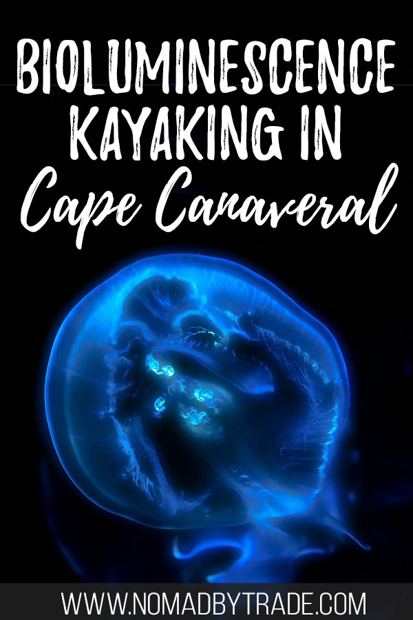 """Bioluminescent comb jellyfish with text overlay reading """"Bioluminescence Kayaking in cape Canaveral"""""""