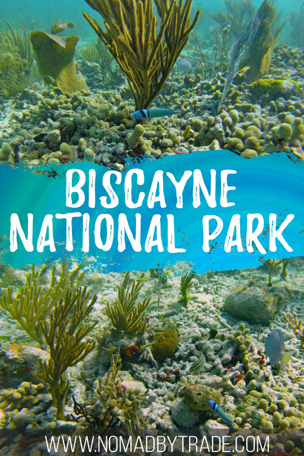 "Collage of coral and fish images with text overlay reading ""Biscayne National Park"""