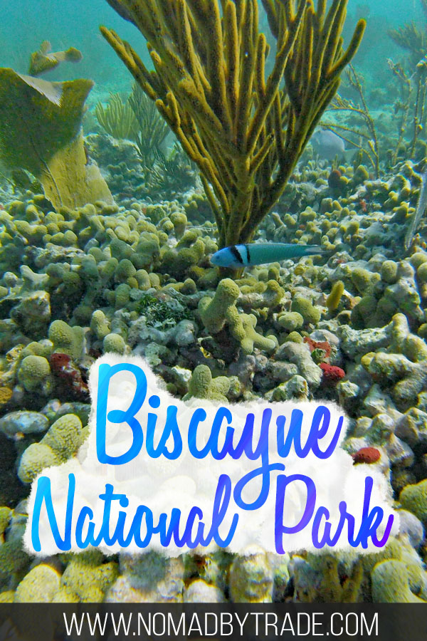 "Colorful fish and coral with text overlay reading ""Biscayne National Park"""