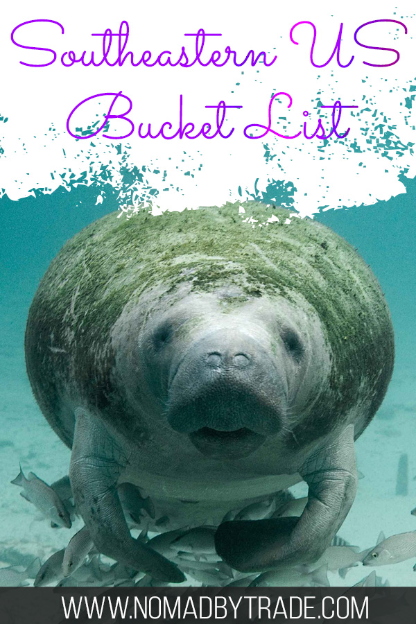 "Swimming manatee with text overlay reading ""Southeastern US Bucket List"""